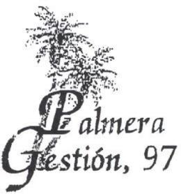 PALMERA GESTION